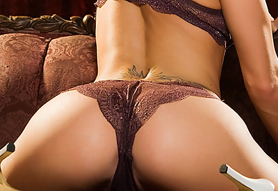 Picture Gallery of Melissa Jacobs Buxom Brunette in Brown Lace