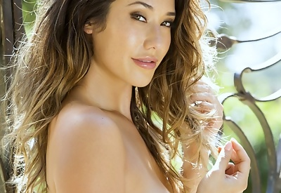 Picture Gallery of Pretty Eva Lovia outdoors in a see-through top